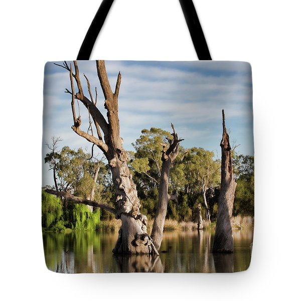 Tote Bag featuring the photograph Contrasted by Douglas Barnard