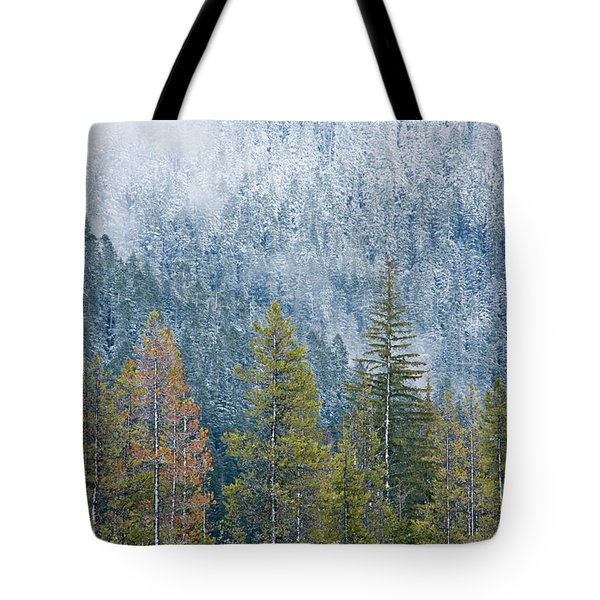 Contrasting Pines Tote Bag