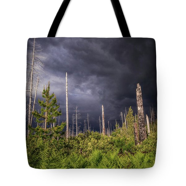 Tote Bag featuring the photograph Contrasts by Cat Connor