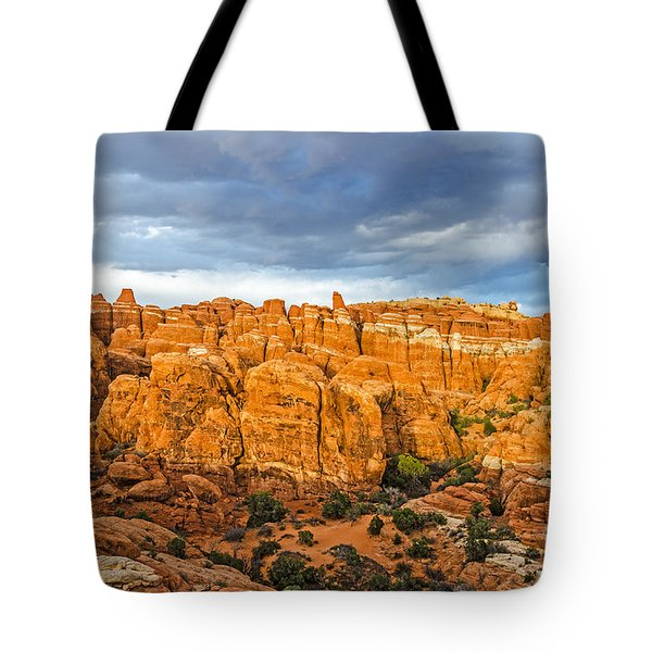 Tote Bag featuring the photograph Contrasts In Arches National Park by Sue Smith