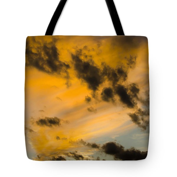 Tote Bag featuring the photograph Contrasts by Wanda Krack