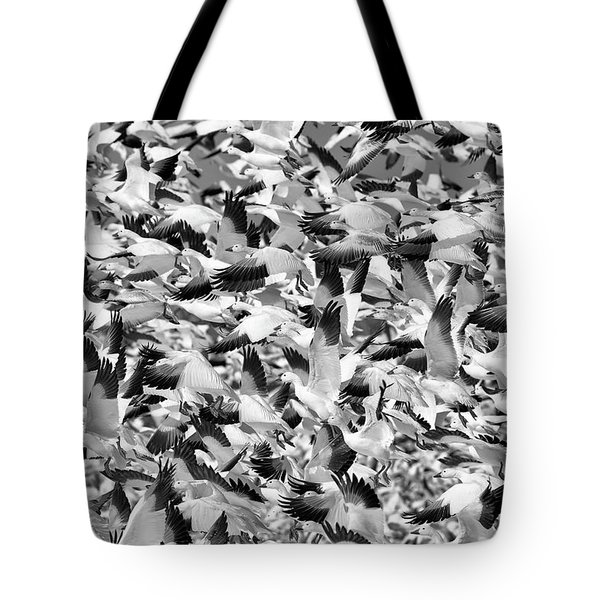 Tote Bag featuring the photograph Controlled Chaos Bw by Everet Regal