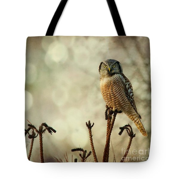 Convenient Perch Tote Bag