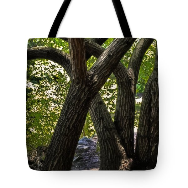 Tote Bag featuring the photograph Convolution by Joseph Hollingsworth