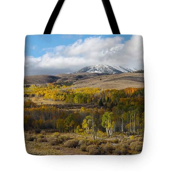 Conway Summit 4 Tote Bag