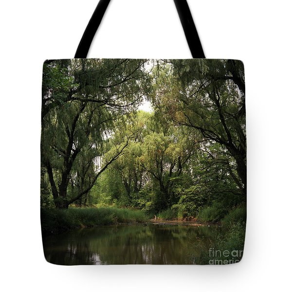 Cook County Forest Preserve No 6 Tote Bag by Kathy McClure