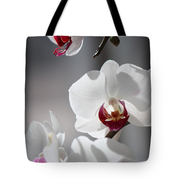 Tote Bag featuring the photograph Cool Classiness by Silke Brubaker