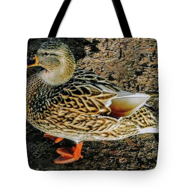Tote Bag featuring the photograph Cool Duck by Roger Bester