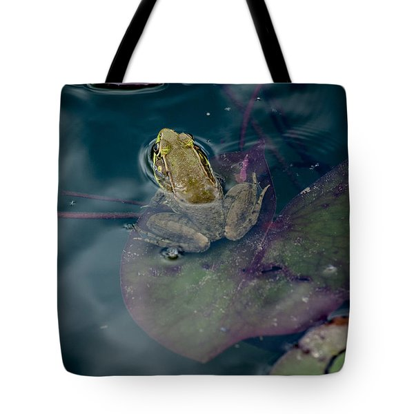 Cool Frog-hot Day Tote Bag