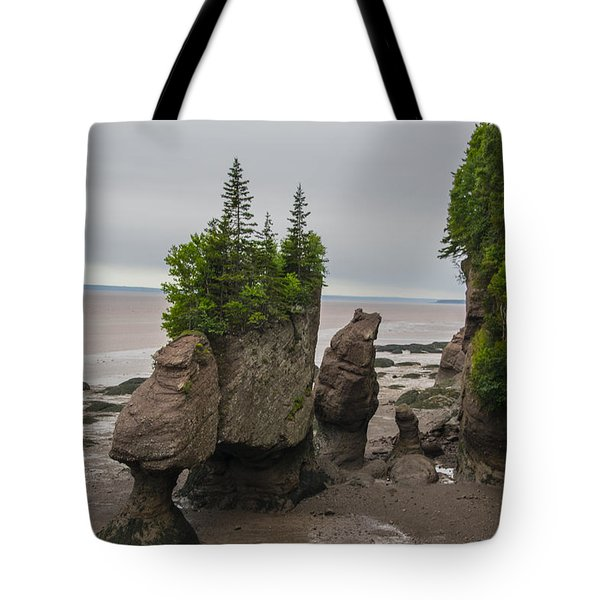 Cool Rocks Tote Bag by Will Burlingham