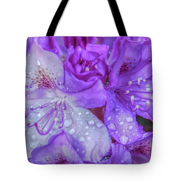 Cool Sunset After The Rain Tote Bag