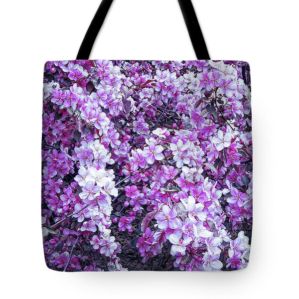 Tote Bag featuring the photograph Cool Sunset Beautiful Blossoms by Aimee L Maher Photography and Art Visit ALMGallerydotcom