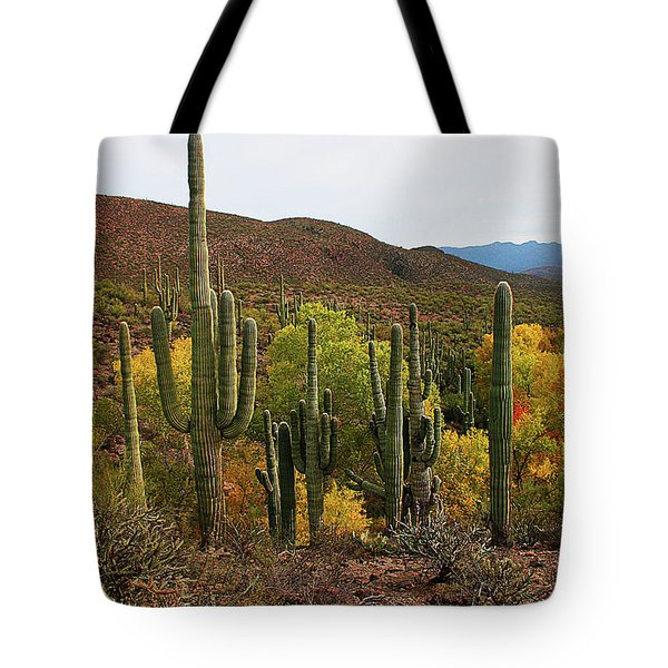 Coon Creek With Saguaros And Cottonwood, Ash, Sycamore Trees With Fall Colors Tote Bag by Tom Janca