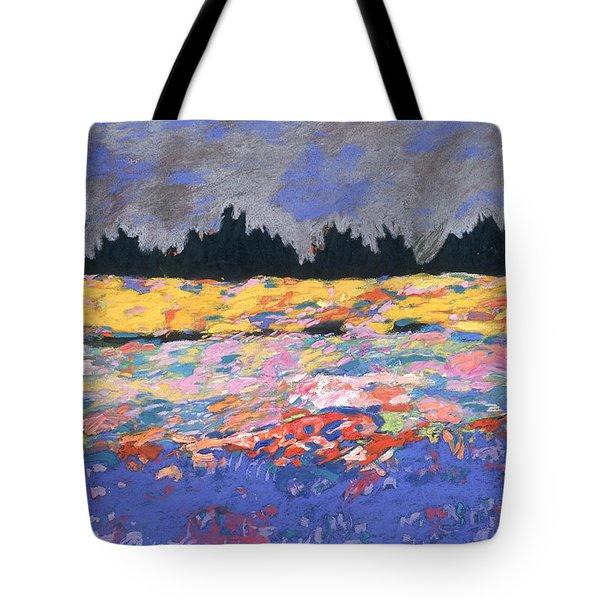 cooney sunset I Tote Bag