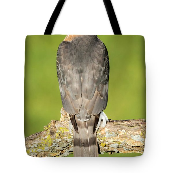 Cooper's Hawk In The Backyard Tote Bag