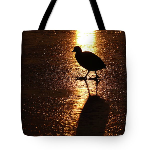 Coot Walks On Golden Ice  Tote Bag