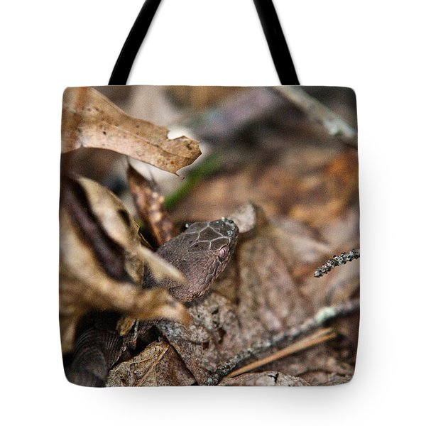 Copperhead 3 Tote Bag by Douglas Barnett