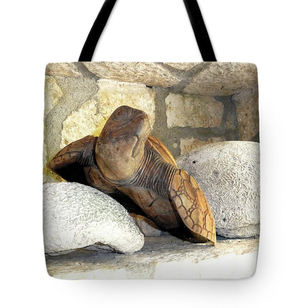 Tote Bag featuring the photograph Coral And Turtle Decor by Francesca Mackenney