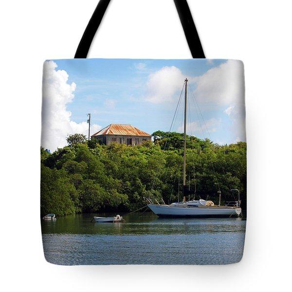 Coral Bay 1 Tote Bag