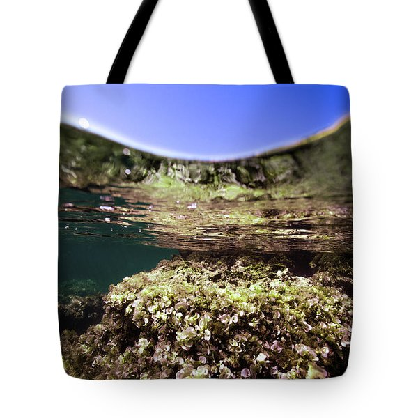 Coral Beauty Tote Bag