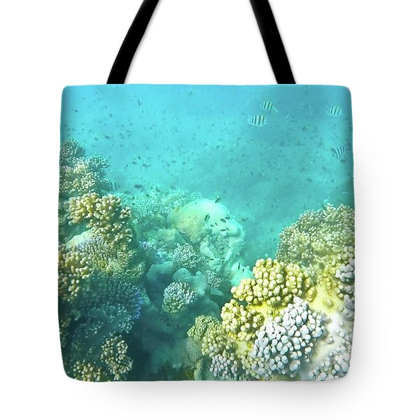 Tote Bag featuring the photograph Coral by Debbie Cundy