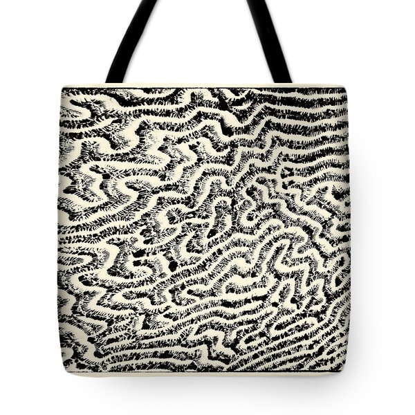 Coral Fossil Abstract -01 Tote Bag by Tony Grider