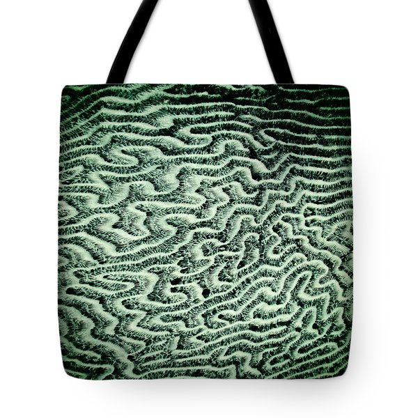 Coral Fossil Abstract -04 Tote Bag by Tony Grider