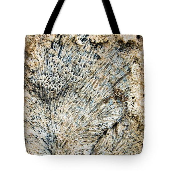 Tote Bag featuring the photograph Coral Fossil by Jean Noren