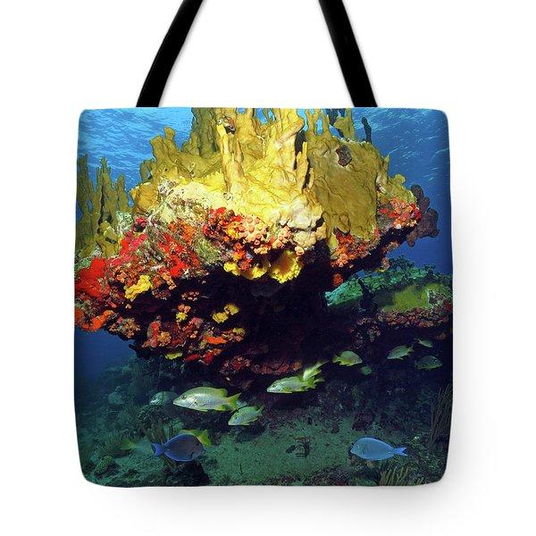 Coral Reef Scene, Calf Rock, Virgin Islands Tote Bag
