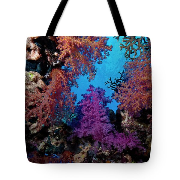 Tote Bag featuring the photograph Coral Window by Rico Besserdich