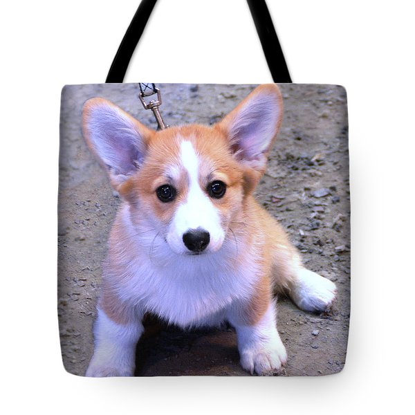 Corgi Puppy Tote Bag