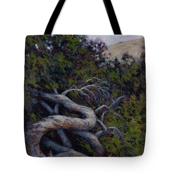 Corkscrewed Tote Bag