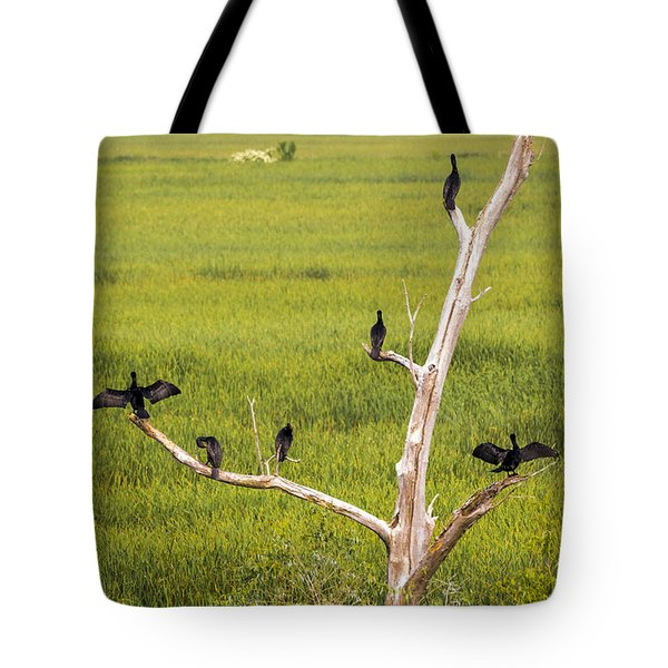 Tote Bag featuring the photograph Cormorant At Horicon Marsh by Ricky L Jones