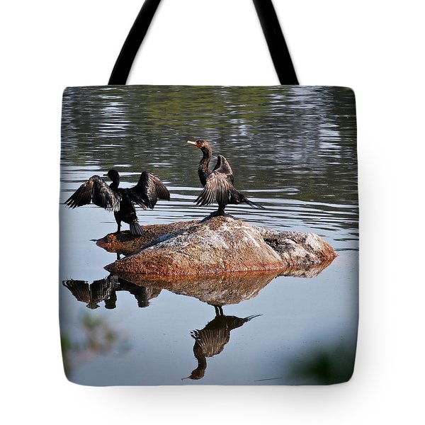 Cormorant Duo Reflections  Tote Bag
