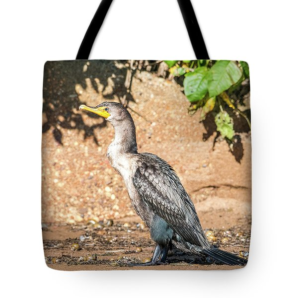 Tote Bag featuring the photograph Cormorant On Shore by Paul Freidlund