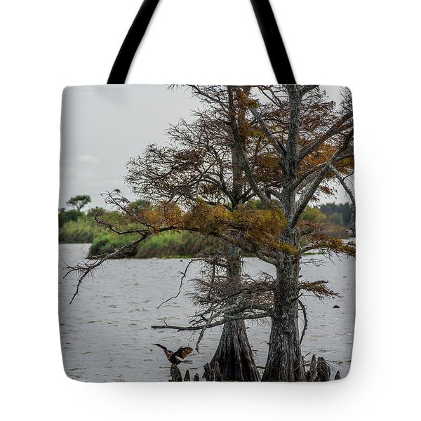 Tote Bag featuring the photograph Cormorant by Paul Freidlund