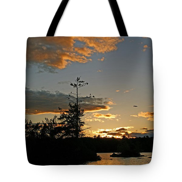 Tote Bag featuring the photograph Cormorant Tree by Lynda Lehmann