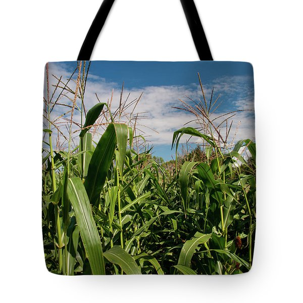 Tote Bag featuring the photograph Corn 2287 by Guy Whiteley