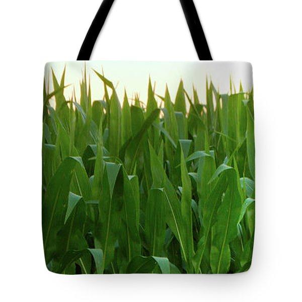 Corn Of July Tote Bag