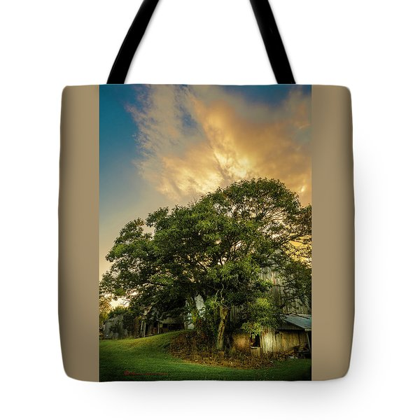 Tote Bag featuring the photograph Corner Oak by Marvin Spates