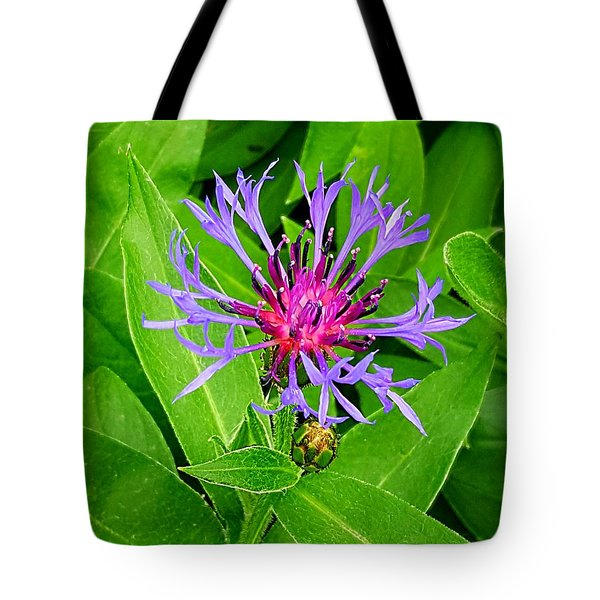 Centaurea Montana Tote Bag