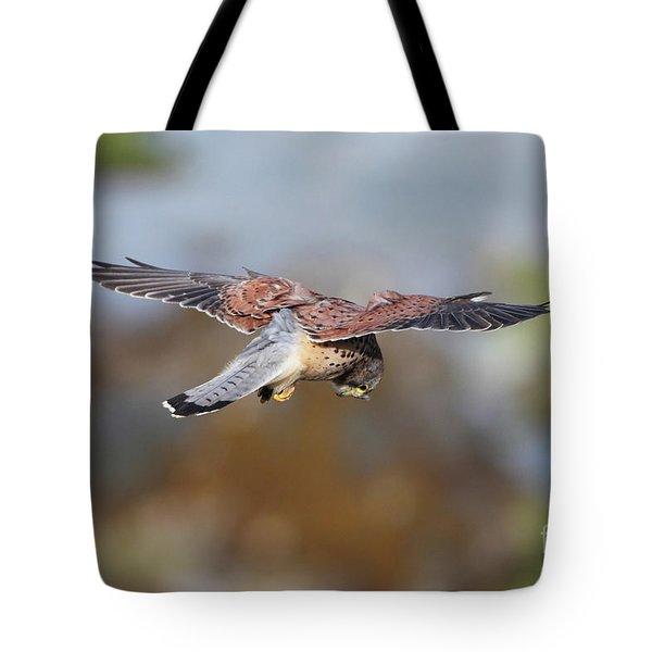 Tote Bag featuring the photograph Cornish Kestrel Hunting by Nicholas Burningham