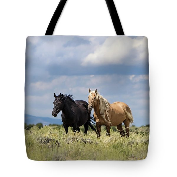 Tote Bag featuring the photograph Corona And Em Of Sand Wash Basin by Nadja Rider