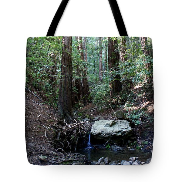 Corte Madera Creek Tote Bag by Ben Upham III