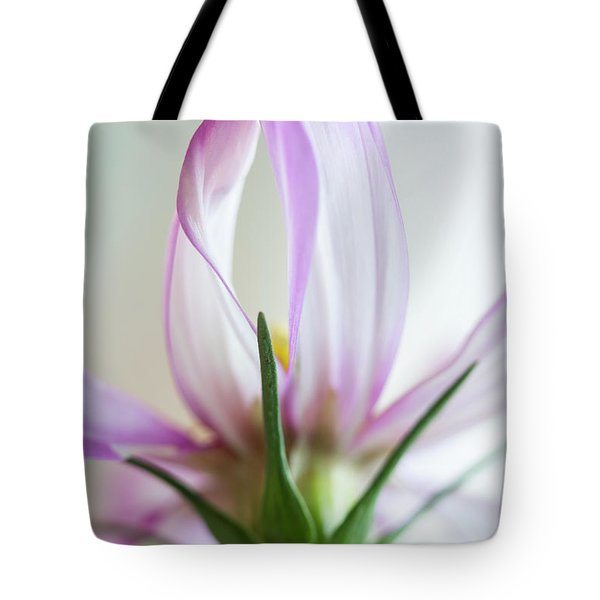 Tote Bag featuring the photograph Cosmos 4 by Elena Nosyreva