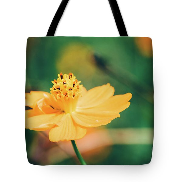 Tote Bag featuring the photograph Cosmos  by Andrea Anderegg