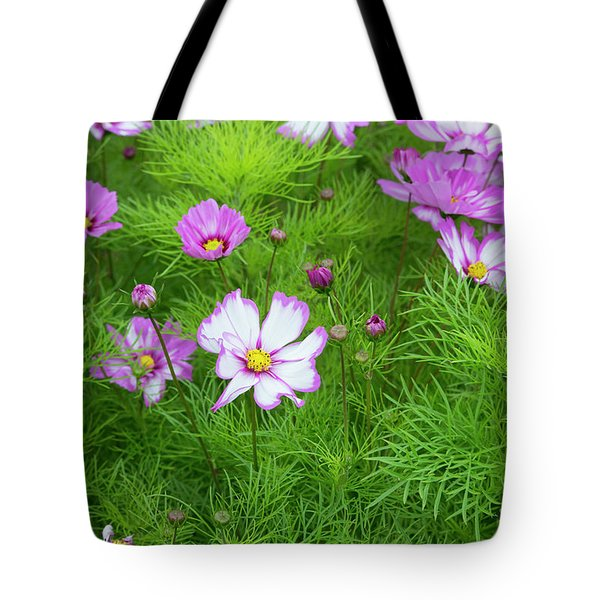 Tote Bag featuring the photograph Cosmos Capriola by Tim Gainey