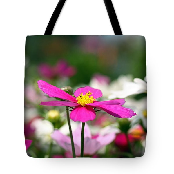 Tote Bag featuring the photograph Cosmos Flowers by Denise Pohl