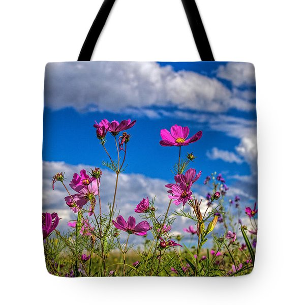 Cosmos Sky Tote Bag by Alana Thrower