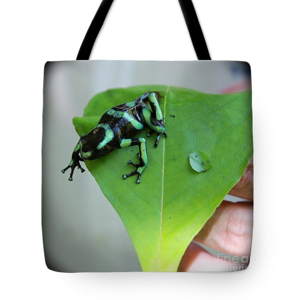 Costa Rican Poison Dart Frog Tote Bag